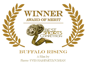 Award_Buffalo-Rising_small