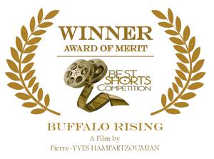 Award_Buffalo-Rising_small